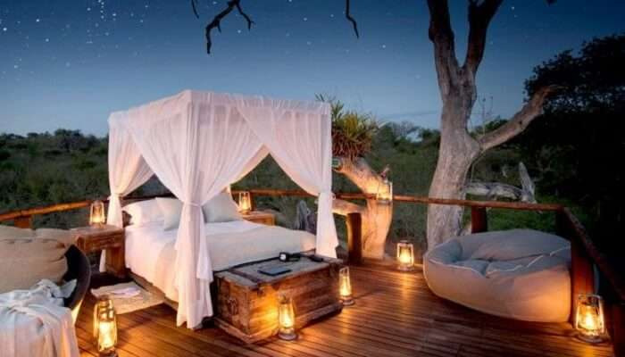 Chalkley Treehouse, Sabi Sand