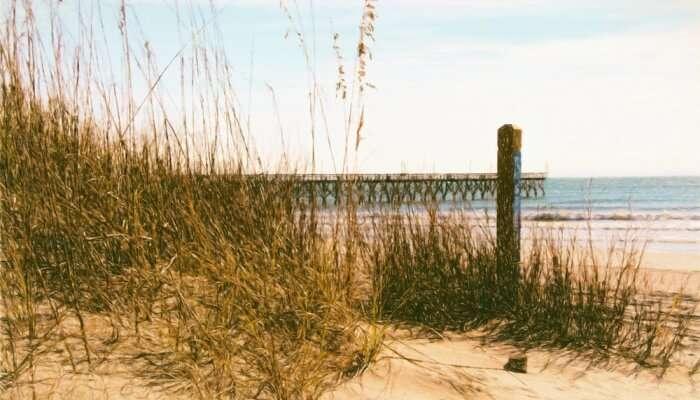 Cherry Grove Beach View