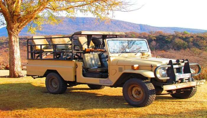 Opt For Jeep Safaris