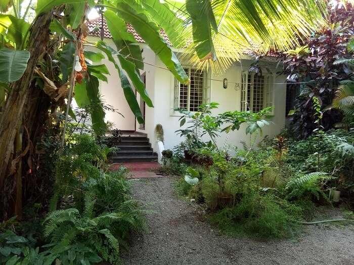 Nice home in Kochi