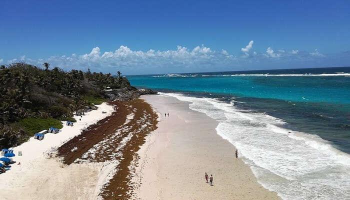 Crane Beach View