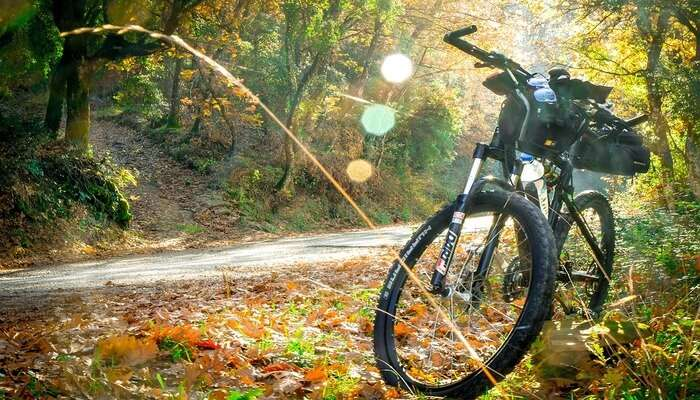 Cycling in City Creek Canyon Road