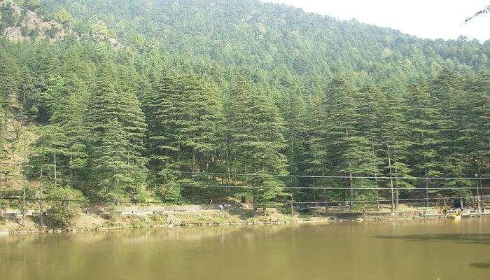 Dal Lake View Dharamshala