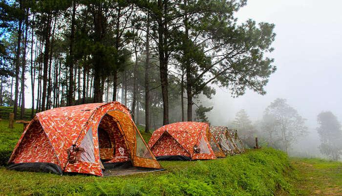 Camping at Doi Ang Khang