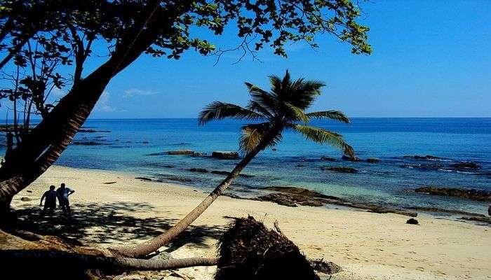 Enjoy Soothing Walks At the Guitar Island Beach