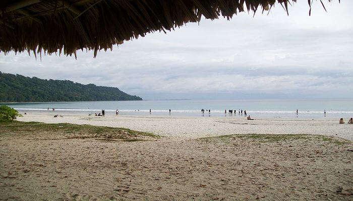Enjoy the Great Radhanagar Beach