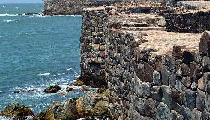 Marine Life In Malvan