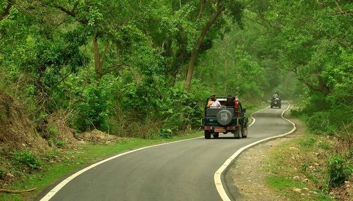 top things to do in Jim Corbett in monsoon