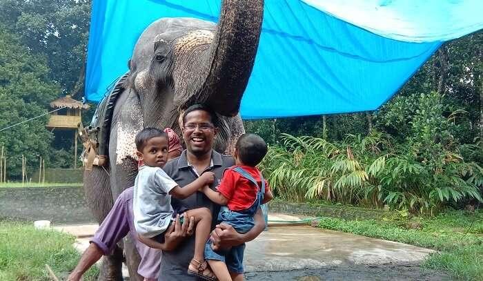 elephant ride in Munnar