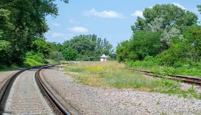 Jasper Train - Go For A Ride