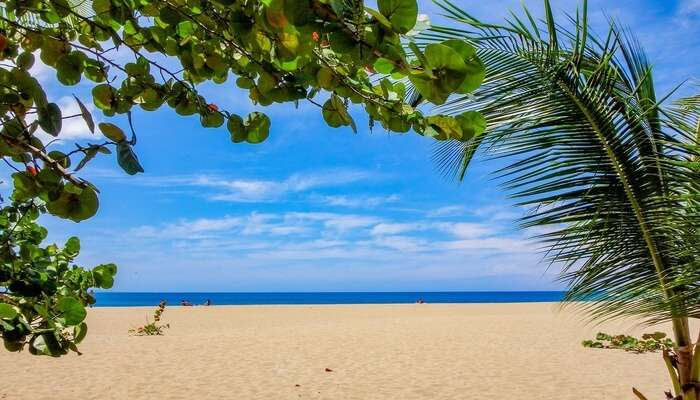 Kamalame Cay Beach