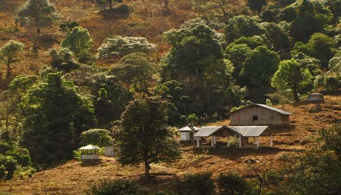Head To The First Green Village Of India, Khonoma