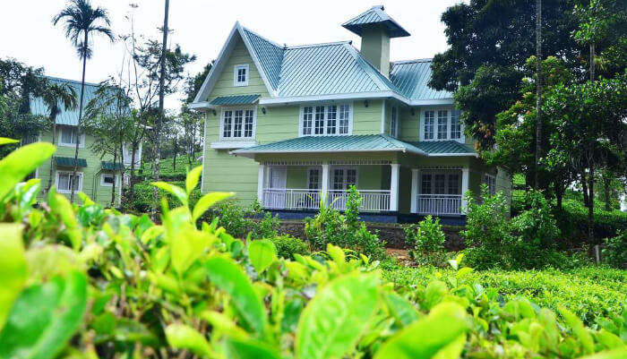 Lavender Hotel in Vagamon