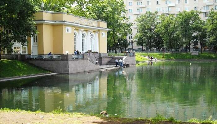Looking At the Serene Patriarch Ponds