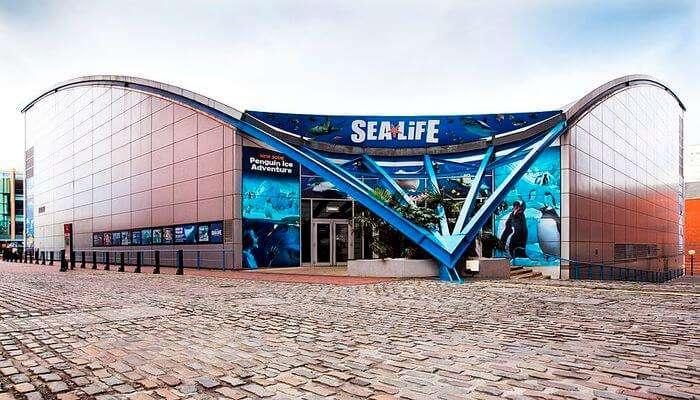 National Sea Life Centre