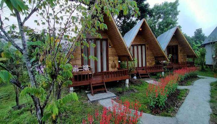 perfect homestay for nature and wildlife backpackers