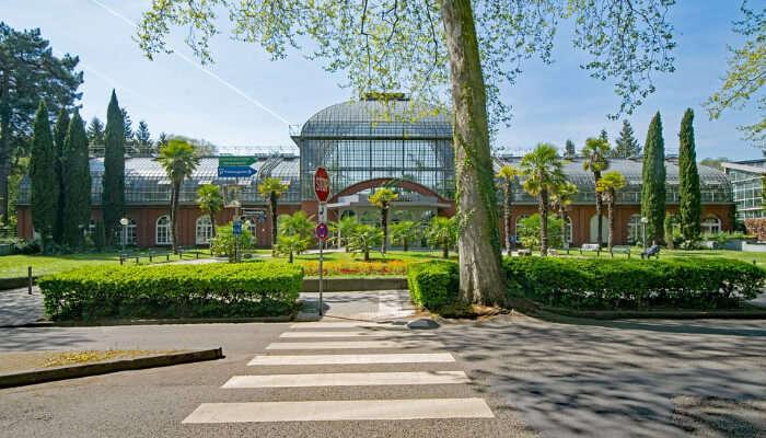 Palm Garden in Frankfurt