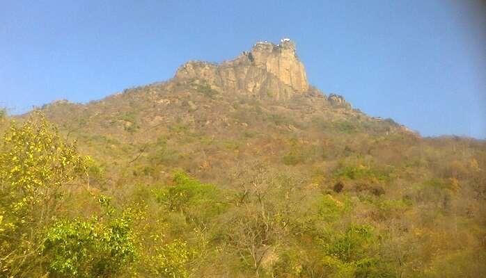 rocky undulating terrain