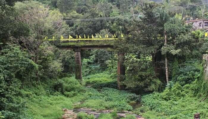 Peerumedu New Bridge