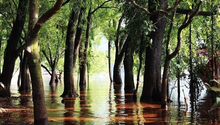 Lakes in Satara