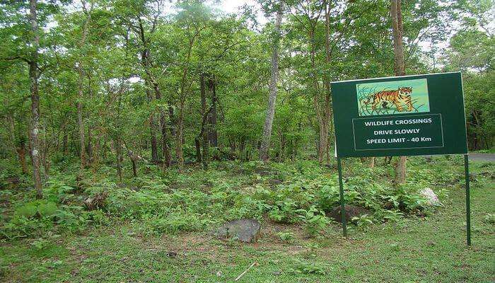 Tikarpada Near Bhubaneswar