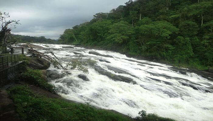 Vazhachal Waterfalls's view