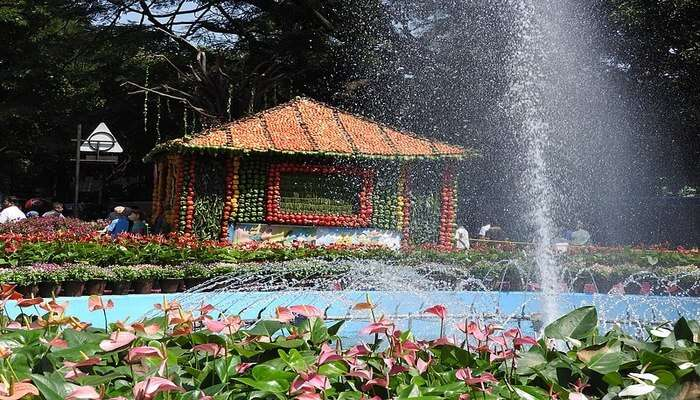 Dancing Musical Fountain In Cubbon Park