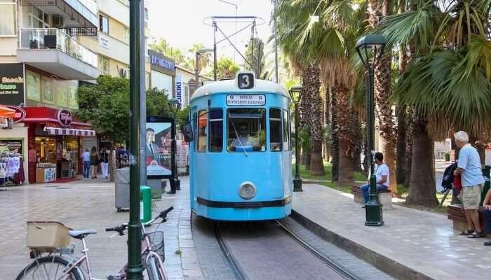 tram riding