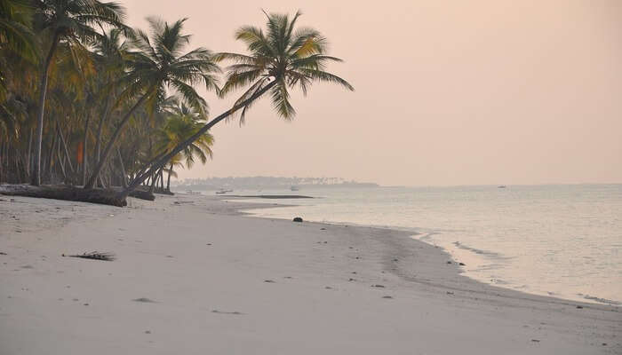 Thing To Do In Lakshadweep