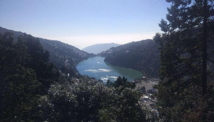 lake amidst lush greenery