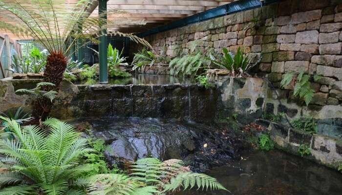 Lisgar garden
