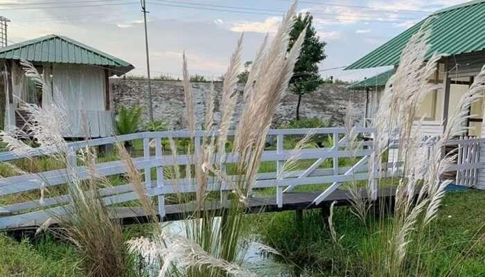 small bridge in a resort