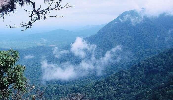 stunning valley view