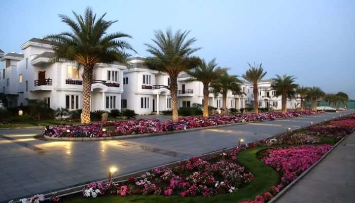 beautiful resort will provide you a comforting stay