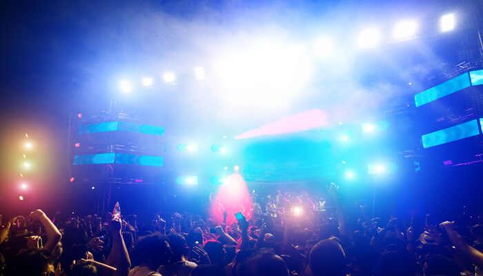 Attend The Summer Night Concert