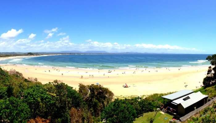 beach amidst greenery