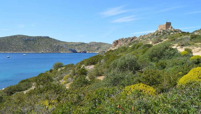 Cabrera Archipelago National Park0310