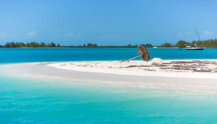 Beautiful Cayo Largo Del Sur