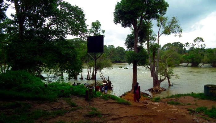 A Riverside