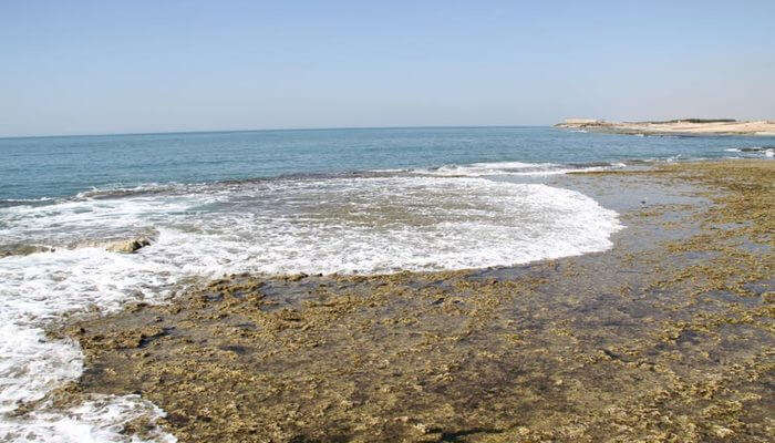 famous beach located in Gujarat