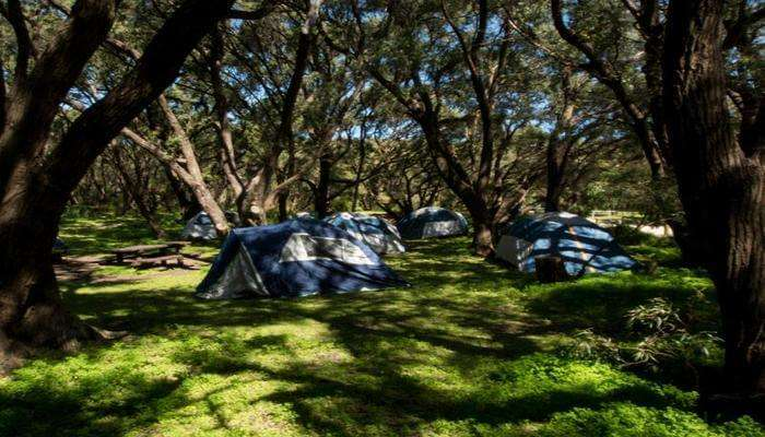 Conto Campground