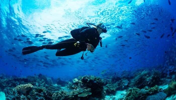 Adventurous Scuba Diving In Sydney