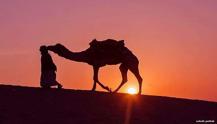 amazing desert area