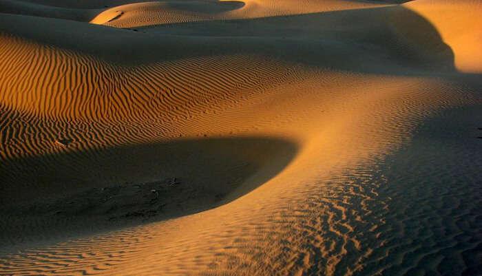 Experience Dune Bashing