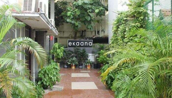 Ekaana Cottages