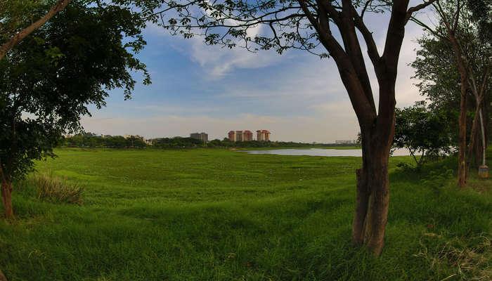 Explore Agara Lake