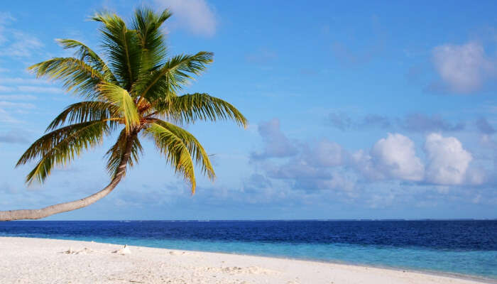Funadhoo Island, Maldives