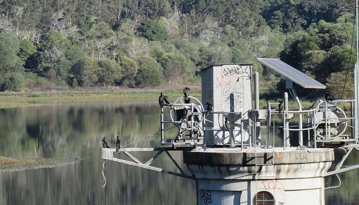 Gold Creek rises in Brisbane Forest Park