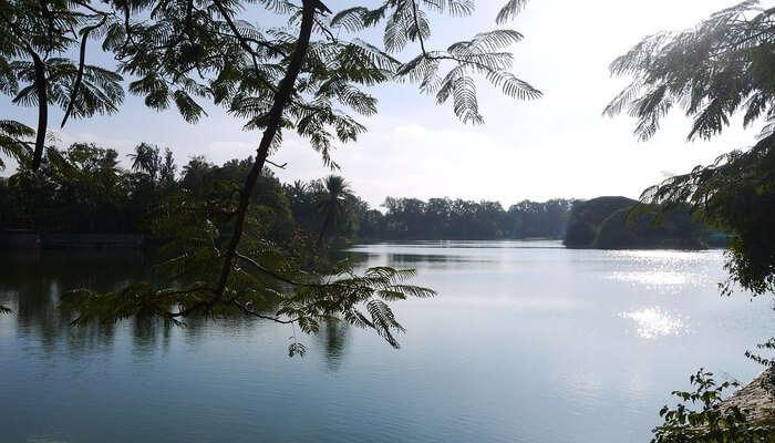 Hesaraghatta Lake_