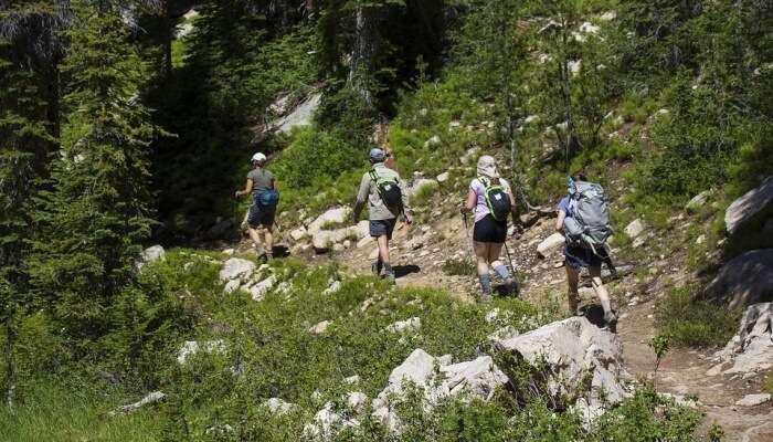 best for hikking